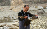 男子捡140斤太岁赚了300万,用150万建山庄开始创业生活