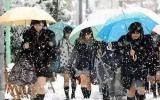 大揭秘!日本女生能在冬天光腿穿裙子,竟是因为这个……