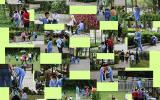 《防止地球流浪》前海小学二(3)班雷锋月主题活动记实
