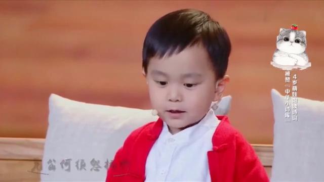 萌娃4岁背诗表演萌翻欢乐中国人