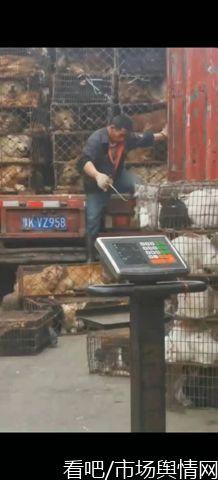 广西柳州一农批市场被指多年违规经营