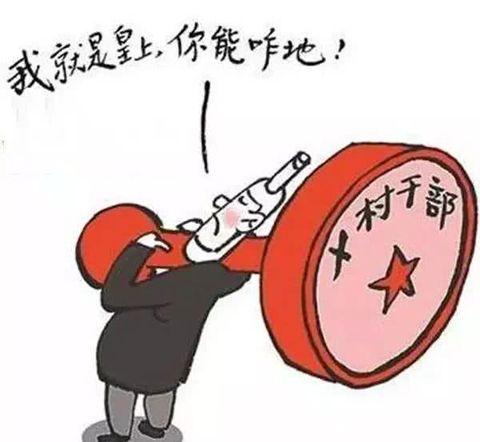 陕西安康:村民自留林山被确权到集体引质疑