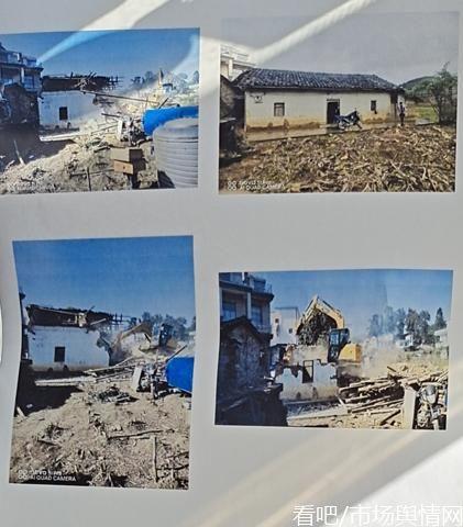 村民称油茶果树被铲损失巨大,集体账单十年不公开