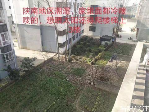 村民诉称其房屋采光被旁边新建楼房遮挡